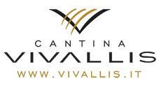 LOGO VIVALLIS + sito